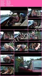 LegShowJo.com 850 Thumbnail